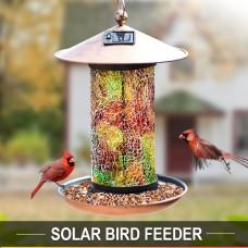 Solar Bird-Feeder for Outside Hanging Outdoor